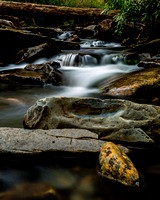 Streams of the Smokies #3