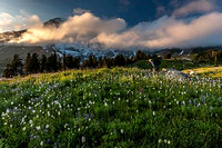Sunset on the slopes of Mt Rainier...it's called Paradise Valley for a reason